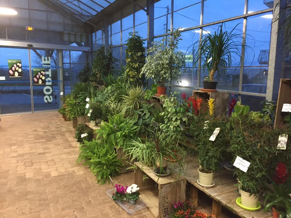 jardinerie rodez