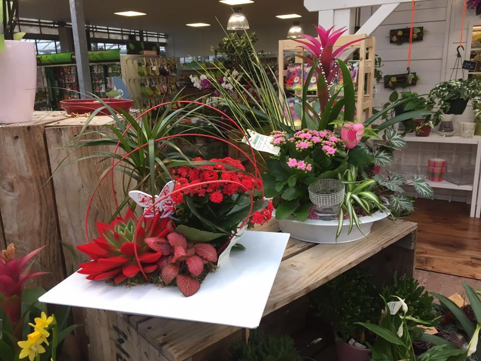 Décoration florale Rodez