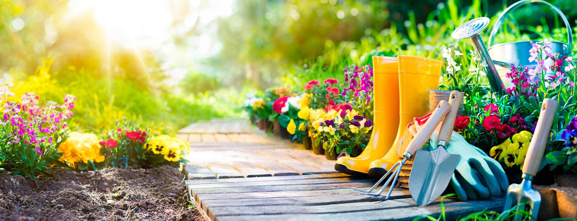 Un beau jardin avec la jardinerie André