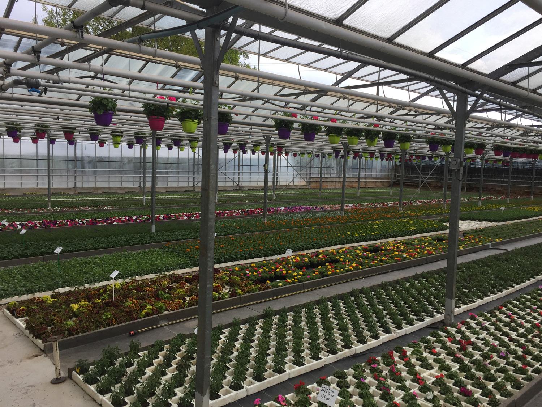 Jardinerie Luc la Primaube
