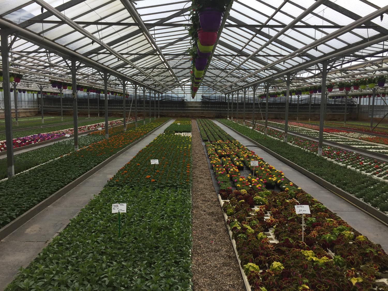 Horticulteurs Rodez
